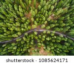 green forest aerial drone view. ... | Shutterstock . vector #1085624171