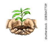 young plant with ground in hands | Shutterstock .eps vector #1085647739
