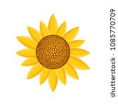 sunny plant icon. flat... | Shutterstock .eps vector #1085770709