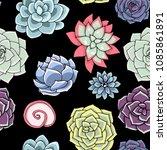 vector succulents seamless... | Shutterstock .eps vector #1085861891