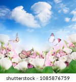 a bouquet of amazing eustoma on ... | Shutterstock . vector #1085876759