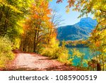 road with yellow autumn trees... | Shutterstock . vector #1085900519