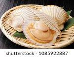 scallops food image   Shutterstock . vector #1085922887