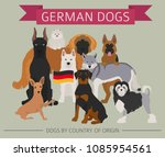 dogs by country of origin.... | Shutterstock .eps vector #1085954561