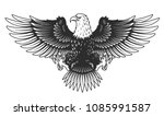Eagle Isolated On White Vector...