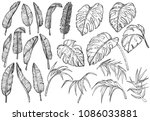 tropical jungle leaves set | Shutterstock .eps vector #1086033881