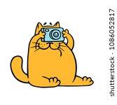 Cartoon Orange Cat With Camera...