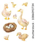 watercolor set of geese.... | Shutterstock . vector #1086093734
