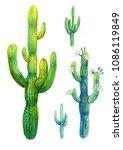 cactus watercolor illustration. ... | Shutterstock . vector #1086119849