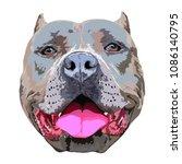 pit bull portrait | Shutterstock .eps vector #1086140795
