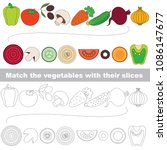 vegetable slices set to find... | Shutterstock .eps vector #1086147677