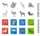 lama  ostrich emu  young... | Shutterstock .eps vector #1086151931