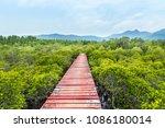 old wooden walkway bridge in to ... | Shutterstock . vector #1086180014