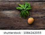 mango fruit with leaf on wooden ... | Shutterstock . vector #1086262055
