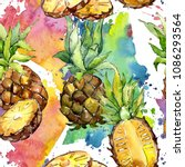 exotic pineapple healthy food... | Shutterstock . vector #1086293564