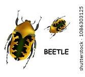 beetle. set of colorful beetles ... | Shutterstock .eps vector #1086303125