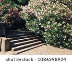 abandoned ordzhonikidze... | Shutterstock . vector #1086398924