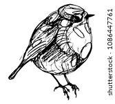 isolated vector illustration of ... | Shutterstock .eps vector #1086447761