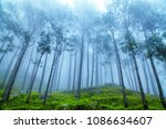 beautiful view of foggy pine... | Shutterstock . vector #1086634607
