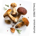 fresh forest mushroom   italian ... | Shutterstock . vector #1086707441