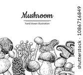 mushroom hand drawn vector...   Shutterstock .eps vector #1086716849