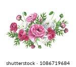 hand drown watercolor... | Shutterstock . vector #1086719684
