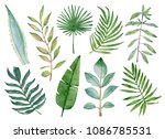 watercolor green leaves and ... | Shutterstock . vector #1086785531