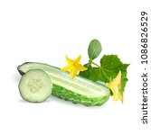 fresh  nutritious  tasty green... | Shutterstock .eps vector #1086826529