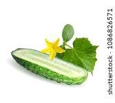 fresh  nutritious  tasty green... | Shutterstock .eps vector #1086826571