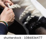 a close up a a girl plaiting a... | Shutterstock . vector #1086836477
