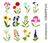 Set Of Field Flowers Including...