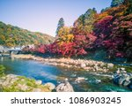 Beautiful autumn leaves under clear sky at Aichi , Toyota city , Japan