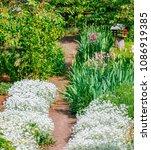 beautiful home garden allotment ... | Shutterstock . vector #1086919385