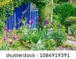beautiful home garden allotment ... | Shutterstock . vector #1086919391