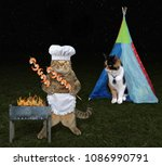 Stock photo the cat cooks shrimps on the barbecue grill for his lover at a picnic 1086990791