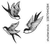 set of swallow birds on white...   Shutterstock .eps vector #1087044284