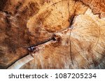 abstract background or texture... | Shutterstock . vector #1087205234