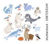 wild north pole animals set in... | Shutterstock .eps vector #1087253144