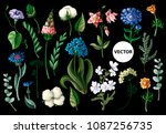 Stock vector wild flowers isolated on a black background vector illustration 1087256735