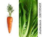 carrot and lettuce. vector... | Shutterstock .eps vector #1087395659