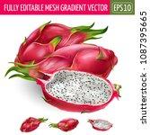 dragon fruit on white... | Shutterstock .eps vector #1087395665