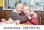 happy old couple smiling in... | Shutterstock . vector #1087401761