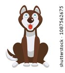 husky dog sits and looks up... | Shutterstock .eps vector #1087562675