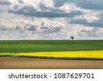 spring landscape with colorful... | Shutterstock . vector #1087629701
