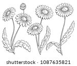 chamomile flower graphic black... | Shutterstock .eps vector #1087635821