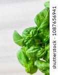 fresh organic basil on marble... | Shutterstock . vector #1087656941