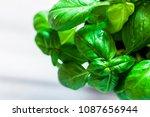fresh organic basil on marble... | Shutterstock . vector #1087656944