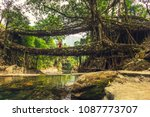 living roots bridge formed by... | Shutterstock . vector #1087773707