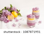 vanilla and blueberry mousse... | Shutterstock . vector #1087871951