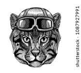 animal wearing aviator helmet...   Shutterstock .eps vector #1087927991